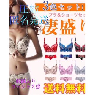 ゴージャス刺繍補正ランジェリー3枚セット 38/85AB(ブラ&ショーツセット)