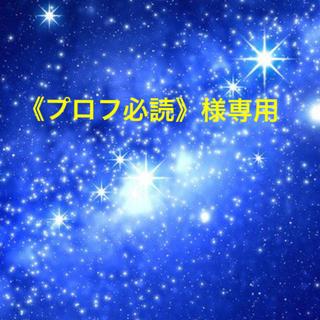 《プロフ必読》様専用 専用期限11/3まで(その他)