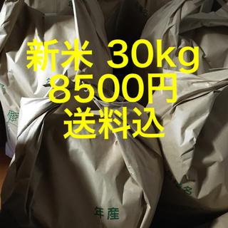 新米 30kg 送料込(米/穀物)