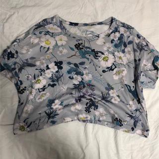マメ(mame)のマメ mame (Tシャツ(半袖/袖なし))