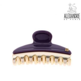 アレクサンドルドゥパリ(Alexandre de Paris)の☆SR様専用 ☆ ALEXANDRE DE PARIS ヴァンドームクリップ(その他)