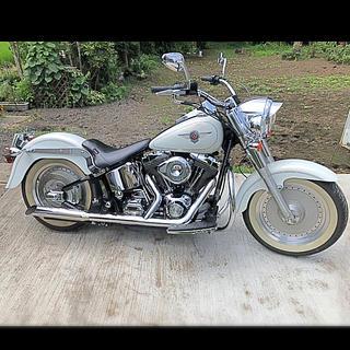 ハーレーダビッドソン(Harley Davidson)のハーレー(車体)