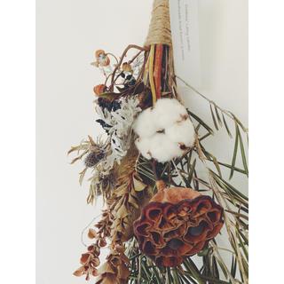 月桃と蓮の実 パラノムス コットンボールのオリーブスワッグ (ドライフラワー)