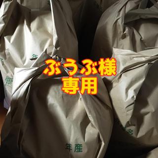 ぶうぶ様 専用(米/穀物)