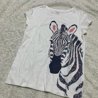 ギャップ(GAP)のGAP シマウマ Tシャツ(Tシャツ/カットソー)
