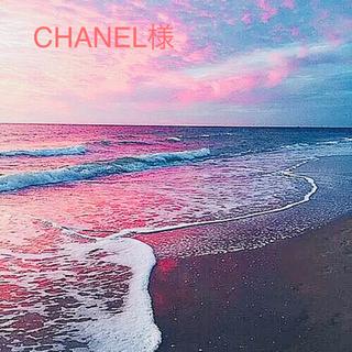 シャネル(CHANEL)のCHANEL ムエセット クリスマスバージョン 10枚(その他)