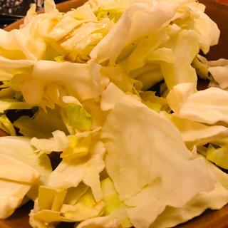 キャベツ(野菜)