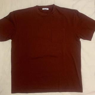 ユナイテッドアローズ(UNITED ARROWS)のブラウンTシャツ(Tシャツ/カットソー(半袖/袖なし))
