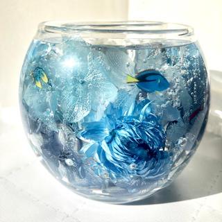 【再販】まるで水族館♫  お魚が泳ぐキャンドルホルダー  固めるハーバリウム  (アロマ/キャンドル)