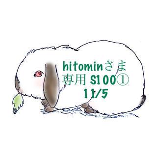 スヌーピー(SNOOPY)の★11/5★hitominさま専用ページS100(その他)