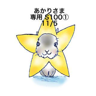 スヌーピー(SNOOPY)の★11/5★あかりさま専用ページS100(その他)