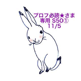 スヌーピー(SNOOPY)の★11/5のみ★プロフ必読★さま専用ページ S50(その他)