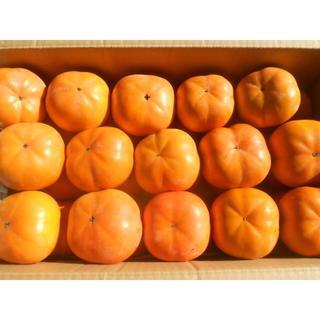 高知産 次郎柿 約8Kg 家庭用(フルーツ)