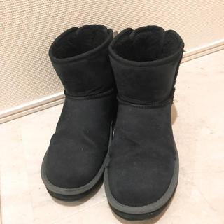 ヴァンズ(VANS)のリボン付きムートンブーツ(ブーツ)