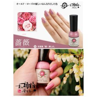 ハウスオブローゼ(HOUSE OF ROSE)の【Naoko様専用】 胡粉ネイル 薔薇 葡萄 2本セット(マニキュア)