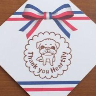 50枚 サンキュー カード セット 犬 ドッグ アニマル 動物 メモ サンクス(カード/レター/ラッピング)