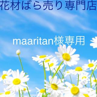 maaritan様専用(ドライフラワー)