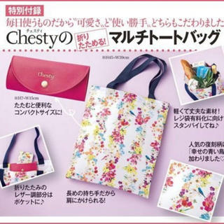 チェスティ(Chesty)の♡新品♡チェスティ♡付録♡(その他)
