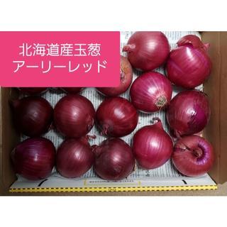 ★北海道産赤玉葱【アーリーレッド】訳あり品(野菜)