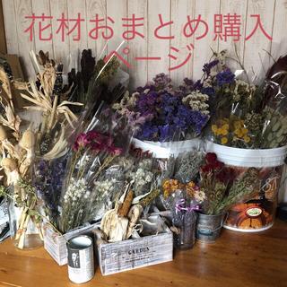 花材おまとめ購入ページ(ドライフラワー)