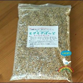 生きた種10穀 ブレンドモグモグばーど 鳥の餌(鳥)