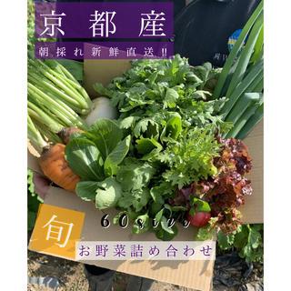 うっくん様専用!100サイズ(野菜)
