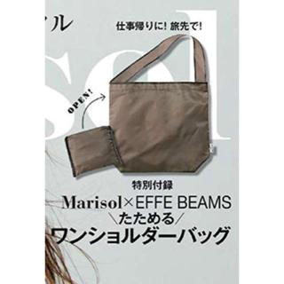 ビームス(BEAMS)のMarisol マリソル 12月号特別付録(その他)