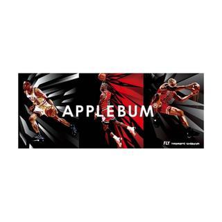 アップルバム(APPLEBUM)のAPPLEBUM シカゴ ステッカー1  Chicago Sticker(その他)