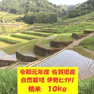 無農薬!自然栽培!農家直送!令和元年度佐賀県産!「伊勢ヒカリ」精米10kg(米/穀物)