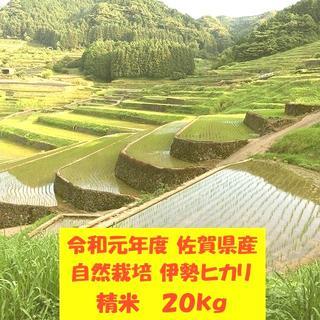 無農薬!自然栽培!農家直送!令和元年度佐賀県産!「伊勢ヒカリ」精米20kg(米/穀物)
