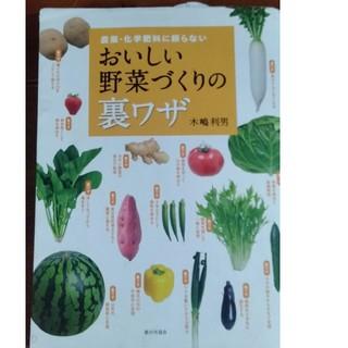 おいしい野菜づくりの裏ワザ(ビジネス/経済)