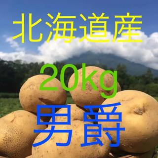 北海道産わけありじゃがいも  20kg男爵(野菜)