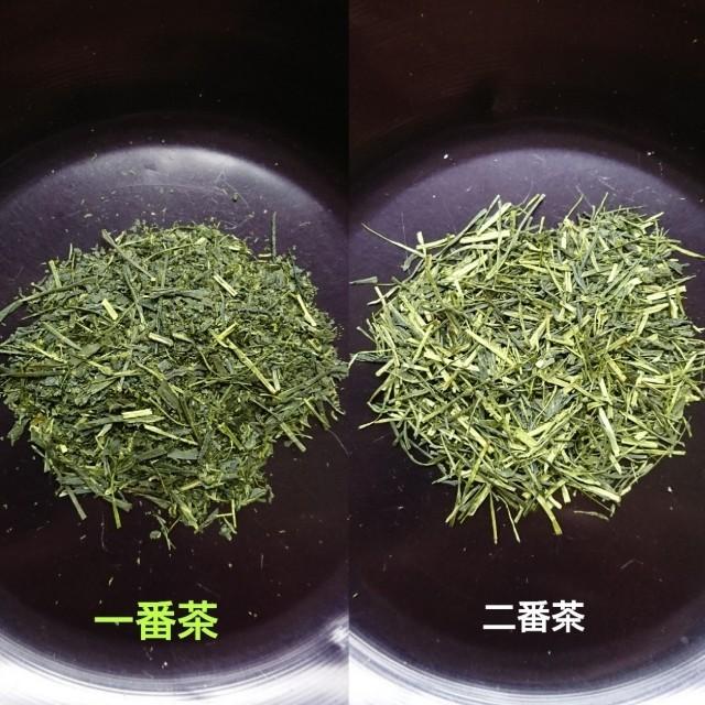静岡茶  「飲み比べ セット」 食品/飲料/酒の飲料(茶)の商品写真