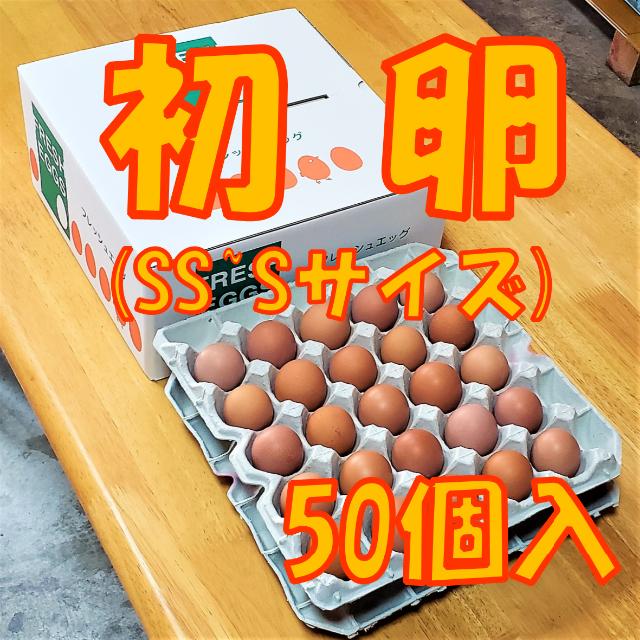 初卵(SS~Sサイズ)☆朝採り産地直送☆50個入り 食品/飲料/酒の食品(野菜)の商品写真