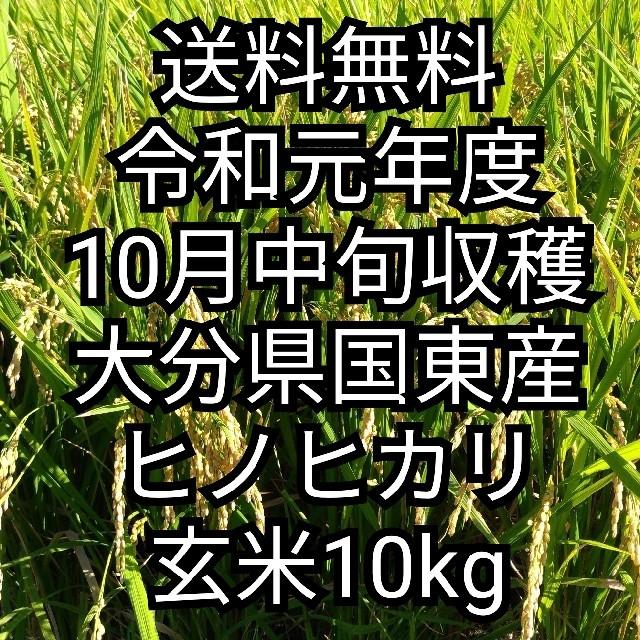 [送料無料] 令和元年大分県国東産 ヒノヒカリ玄米10kg 食品/飲料/酒の食品(米/穀物)の商品写真