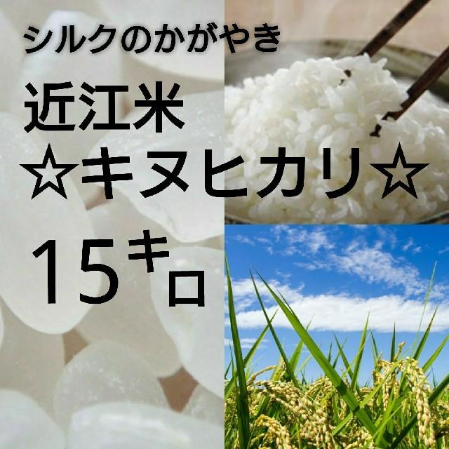 【近江農家直送!】キヌヒカリ15kgを精米 食品/飲料/酒の食品(米/穀物)の商品写真