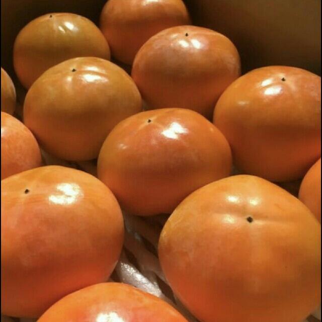 4  岐阜県産富有柿  5キロ 食品/飲料/酒の食品(フルーツ)の商品写真