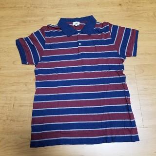 ティーケー(TK)のポロシャツ ボーダー TK(ポロシャツ)