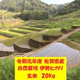 無農薬!自然栽培!農家直送!令和元年度佐賀県産!「伊勢ヒカリ」玄米20kg(米/穀物)