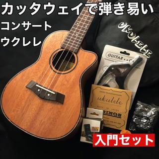 【プロ調整品】Music製 マホガニー・コンサート・ウクレレ【入門セット】