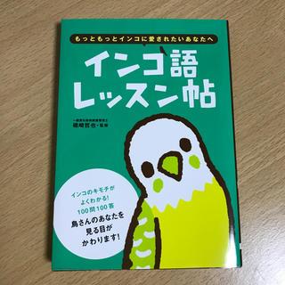 オーイズミ(OIZUMI)のインコ語レッスン帖(住まい/暮らし/子育て)
