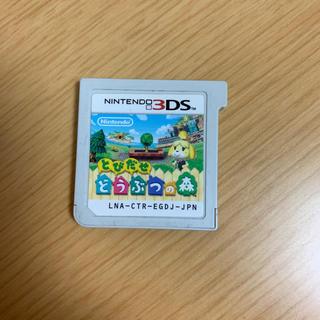 ニンテンドー3DS(ニンテンドー3DS)のどうぶつの森 ソフト(家庭用ゲームソフト)