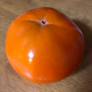 岐阜の富有柿