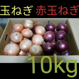 北海道産 減農薬 玉ねぎ 赤玉ねぎ ミックス 10キロ(野菜)