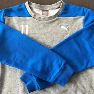プーマ(PUMA)のPUMA男児トレーナー 160(Tシャツ/カットソー)