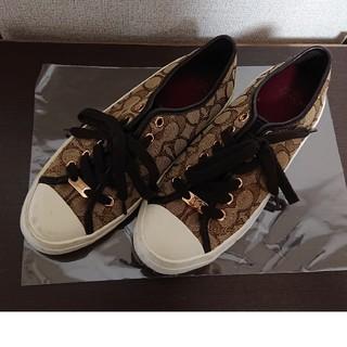 COACH - ♡COACH♡レディース★靴