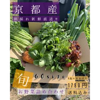 旬のお野菜をお届け!!今ならおまけ付き!無農薬、減農薬野菜(野菜)