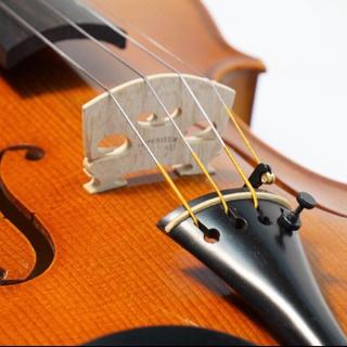 バイオリン弦「Ascente」