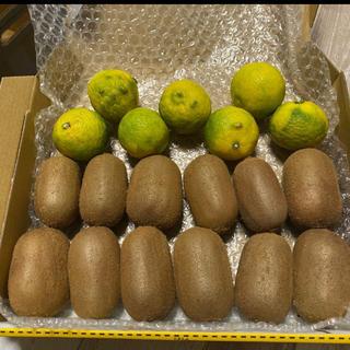 【行列のできるキウイ農家のグリーンキウイ】グリーンキウイ×柚子(フルーツ)