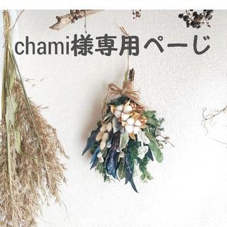 chami17様専用ページ(ドライフラワー)